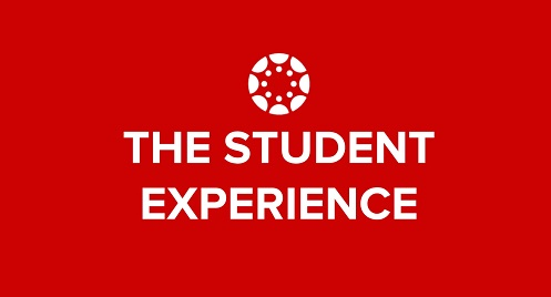 The Student Experience logo
