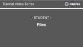 Canvas - Student Files